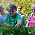 Lincoln Home Residents Enjoy Botanical Gardens