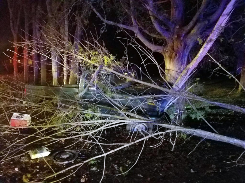 A Damariscotta man's pickup truck crashed into a tree after he fell asleep at the wheel the evening of Wednesday, Nov. 15. (Photo courtesy Damariscotta Police Department)
