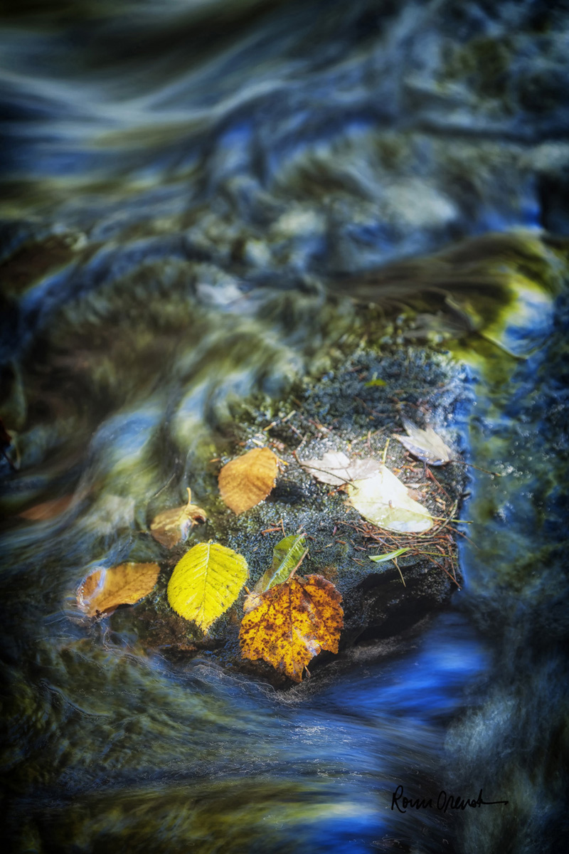 """""""Spirit Waters,"""" by Ronn Orenstein."""