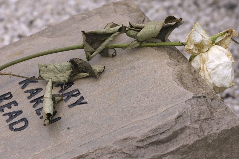 A white rose lays atop the Hokie Stone honoring the life of Virginia Tech student Mary Karen Read, one of 32 Hokie Stones in the April 16 Memorial at Virginia Tech in Blacksburg, Va. (Photo courtesy Tom Mathews)
