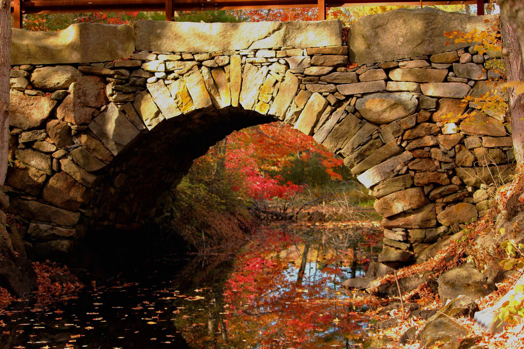 Sandee Brackett's photo of the Arch Bridge in Bristol Mills received the most votes to become the 11th monthly winner of the #LCNme365 photo contest. Brackett will receive a $50 gift certificate to a local business from Damariscotta Bank & Trust, the sponsor of the November contest.