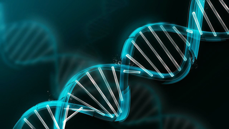 """January's Genealogy Club topic is """"You've Received Your DNA Results -- Now What?"""""""