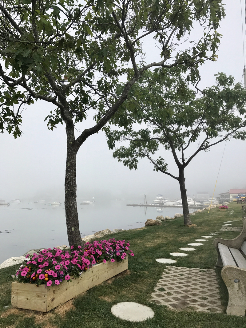 Jim Cosgrove's photo of a foggy morning in Damariscotta's Riverside Park was chosen by readers as the eighth monthly winner of the #LCNme365 photo contest. Cosgrove will receive a $50 gift certificate from Long Winter Soap Co., of Waldoboro, the sponsor of the August contest.