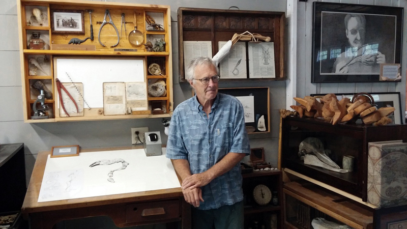 Artist and science illustrator David Wheeler, shown here in his Harpswell studio, is leading a workshop at Damariscotta River Association on Saturday, Jan. 6.