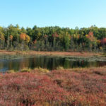 Midcoast Conservancy Announces Permanent Protection of HVNC Property