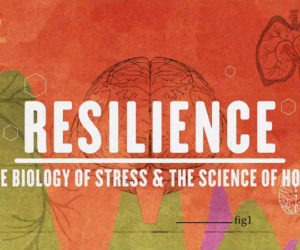 """Free showings of """"Resilience: The Biology of Stress & The Science of Hope"""" will take place on Monday, Feb. 5 at 5:30 p.m. at the Boothbay Region YMCA and Tuesday, Feb. 27 at 5:30 p.m. at Wavus Camp in Jefferson."""
