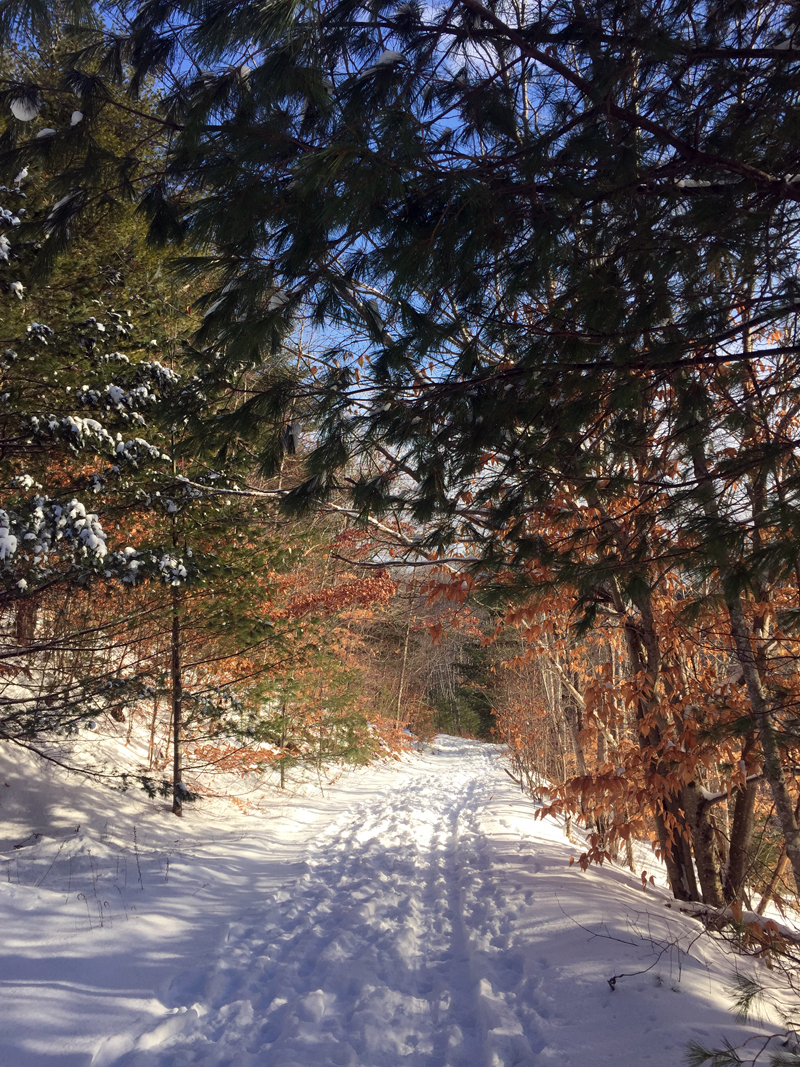 A snowy trail at Hidden Valley Nature Center in Jefferson.