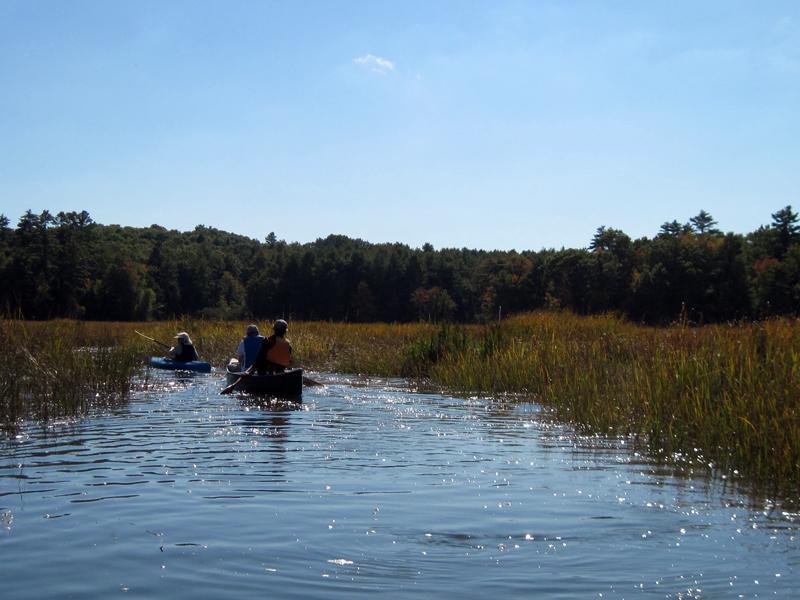 Kayaking on Sherman Marsh in Newcastle.