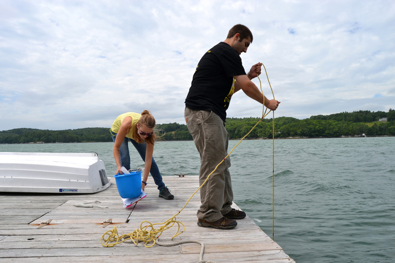 Applications are now being accepted from undergraduate students for summer internships at the Darling Marine Center posted online at dmc.umaine.edu.