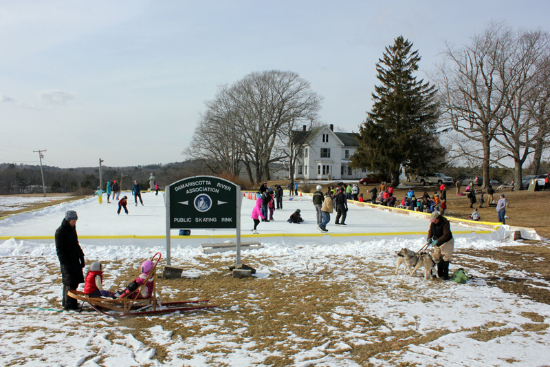 Winter Fest makes the most of winter with ice skating, dogsledding, a campfire, and more on Sunday, Feb. 18 from noon-3 p.m.
