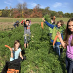 Twin Villages Foodbank Farm Continues to Grow