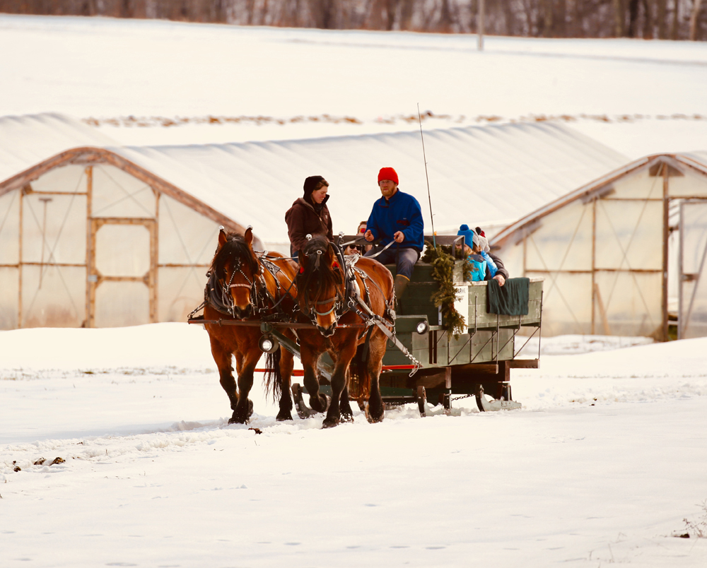 Scott MacMaster's photo of a horse-drawn wagon ride at Goranson Farm in Dresden received the most votes to become the second monthly winner of the 2018 #LCNme365 photo contest. MacMaster will receive a $50 gift certificate to Rising Tide Community Market, of Damariscotta, the sponsor of the February contest.