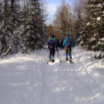 Midcoast Conservancy Group Ski Tours in Jefferson