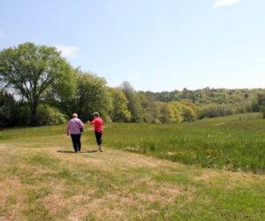 Beauty Walks at Chapman Farm