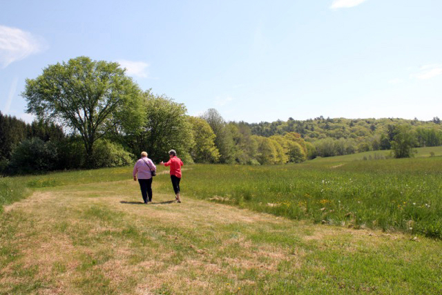 Taking a walk in a natural setting promotes relaxation, reflection, and self-awareness.