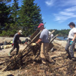 Midcoast Conservancy Offers Three Volunteer Opportunities