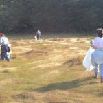 DRA Invites Community to Help Clean Up River Shoreline