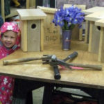 Bluebird Box-Building Workshop