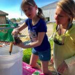 CLC YMCA Celebrates Reopening of Community Playground