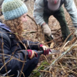 Midcoast Conservancy Offers Volunteer Opportunities