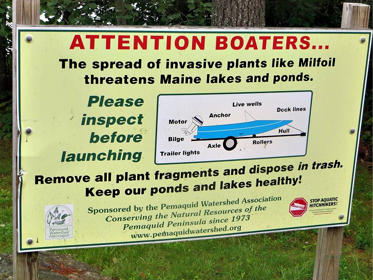 In the courtesy boat-inspection program, volunteers and boaters work together to prevent the spread of invasive aquatic plants.