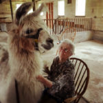 Hodgdon Green Residents Mix with Older Farm Animals