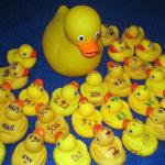 Rubber Duckies Preparing for PWA Race
