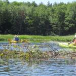 Upcoming Paddles with PWA Paddlers