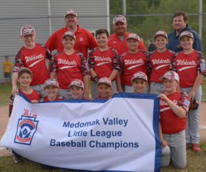 "<span class=""entry-title-primary"">Wildcats win Medomak Valley Little League title</span> <span class=""entry-subtitle"">Wildcats 12- Tigers 7</span>"