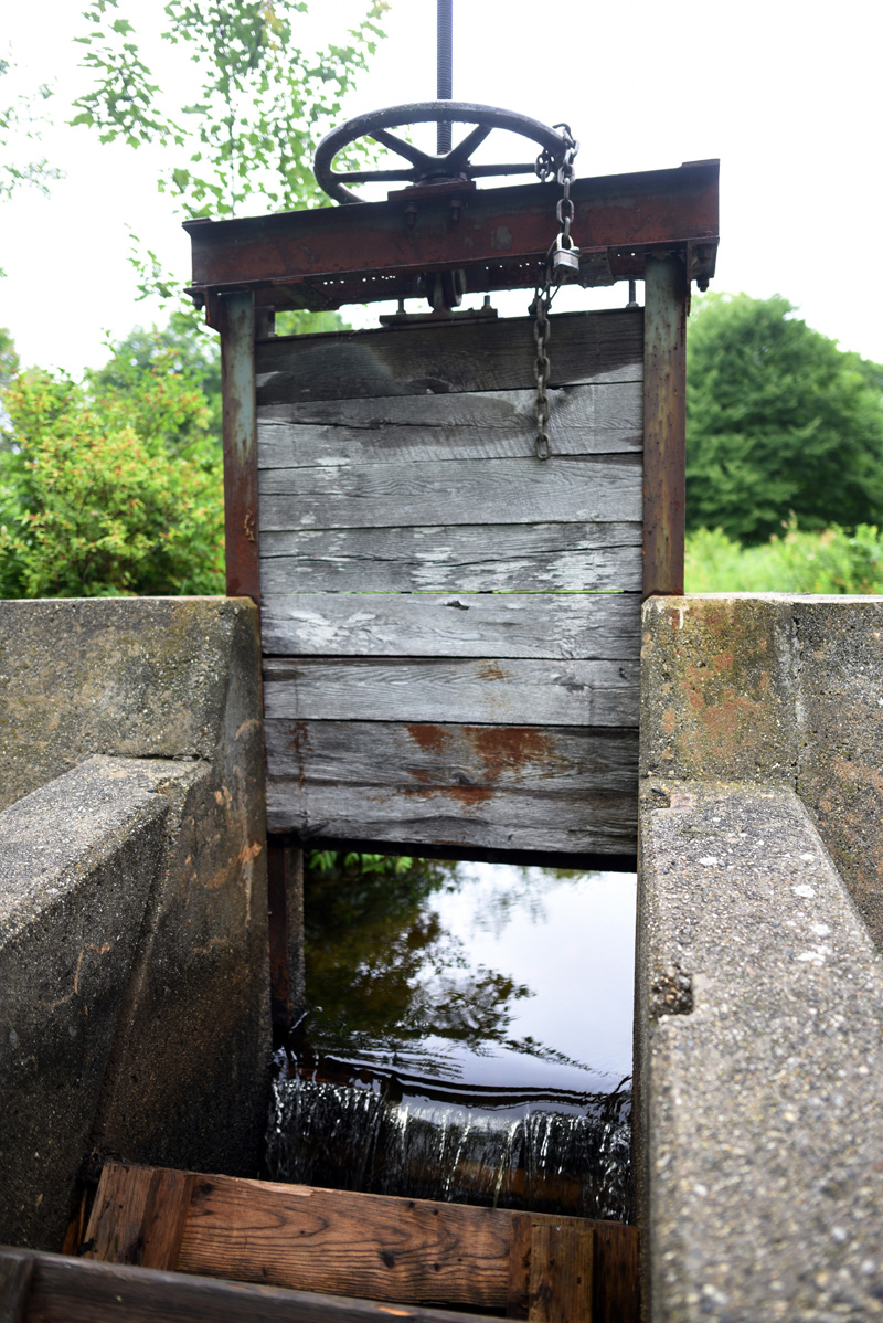 The top of the fish ladder at the Bristol Mills Dam, Tuesday, July 17. (Jessica Picard photo)