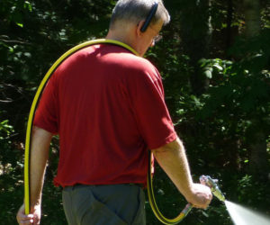 Dresden Business Uses Organic Methods to Control Browntail Moths and Ticks