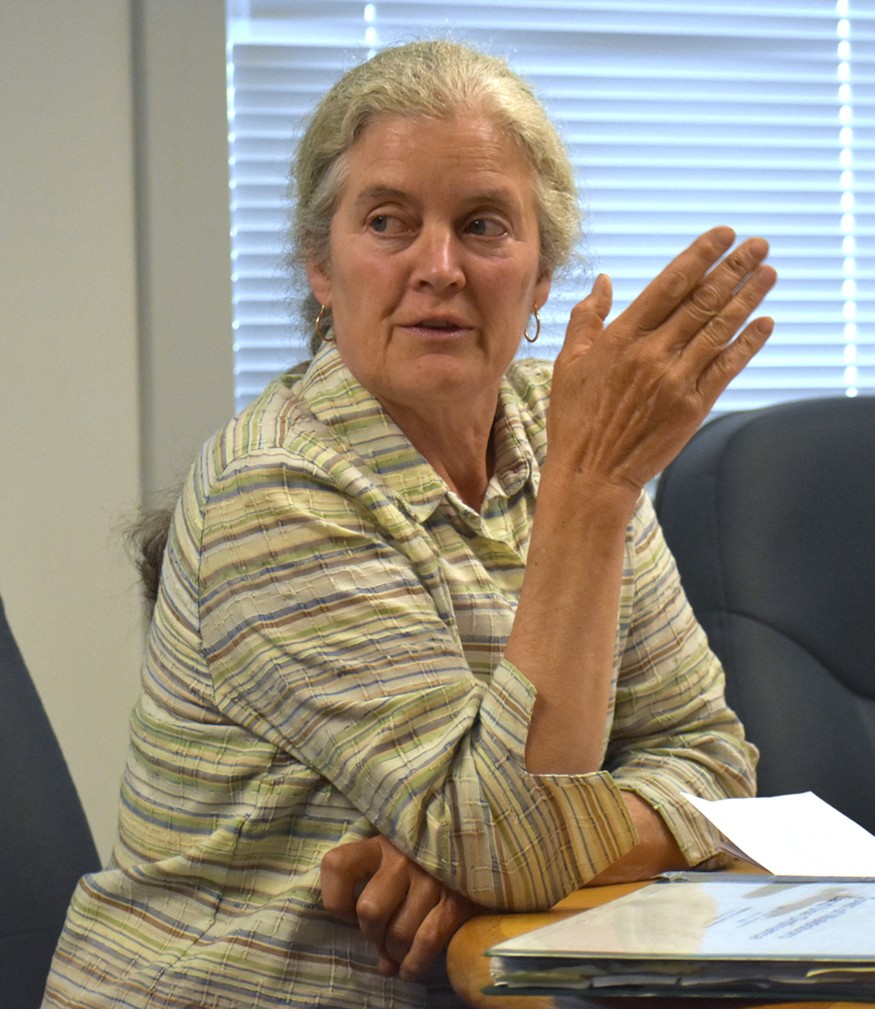Waldoboro Planning Board member Barbara Boardman discusses a proposal for a farm stand and wellness store at Cider Hill Farm on Wednesday, June 27. (Alexander Violo photo)