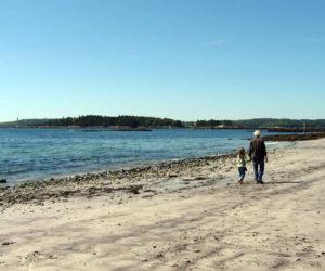 Beachcombers' Rest Nature Center Beach Exploration Series