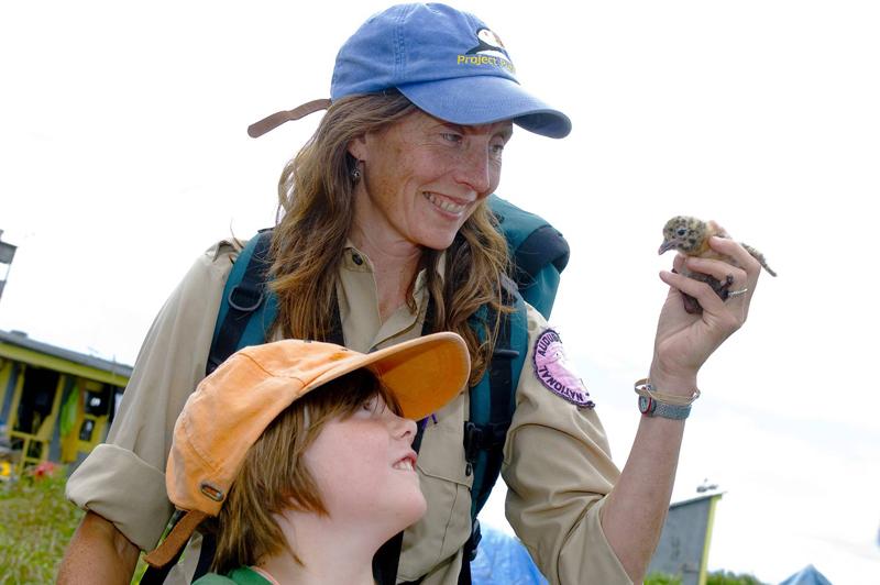 """Seabird Sue"" Schubel teaches all about seabirds."