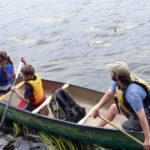 Inaugural Damariscotta Lake Paddle Regatta