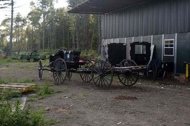 Buggies on Henry Miller's property in Whitefield. The horse-and-buggy is the primary mode of transportation for the town's growing Amish community. (Jessica Clifford photo)