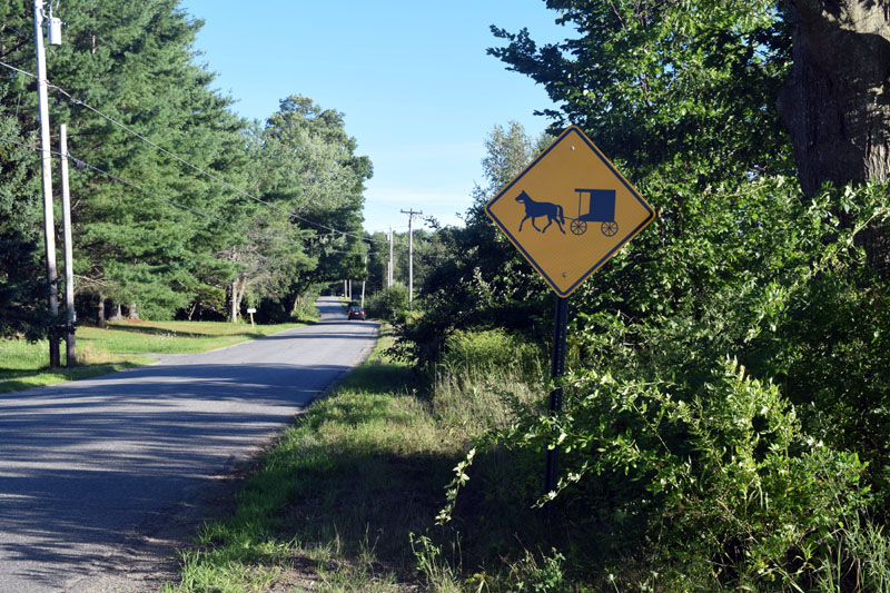 A horse-and-buggy sign on Hilton Road in Whitefield. (Jessica Clifford photo)