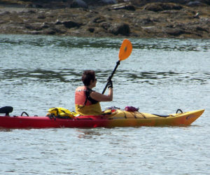 Upcoming Kayaking Trips with PWA Paddlers