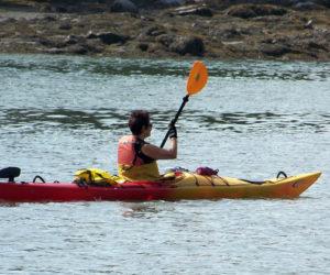 Upcoming Kayaking Trips with PWA Paddlers