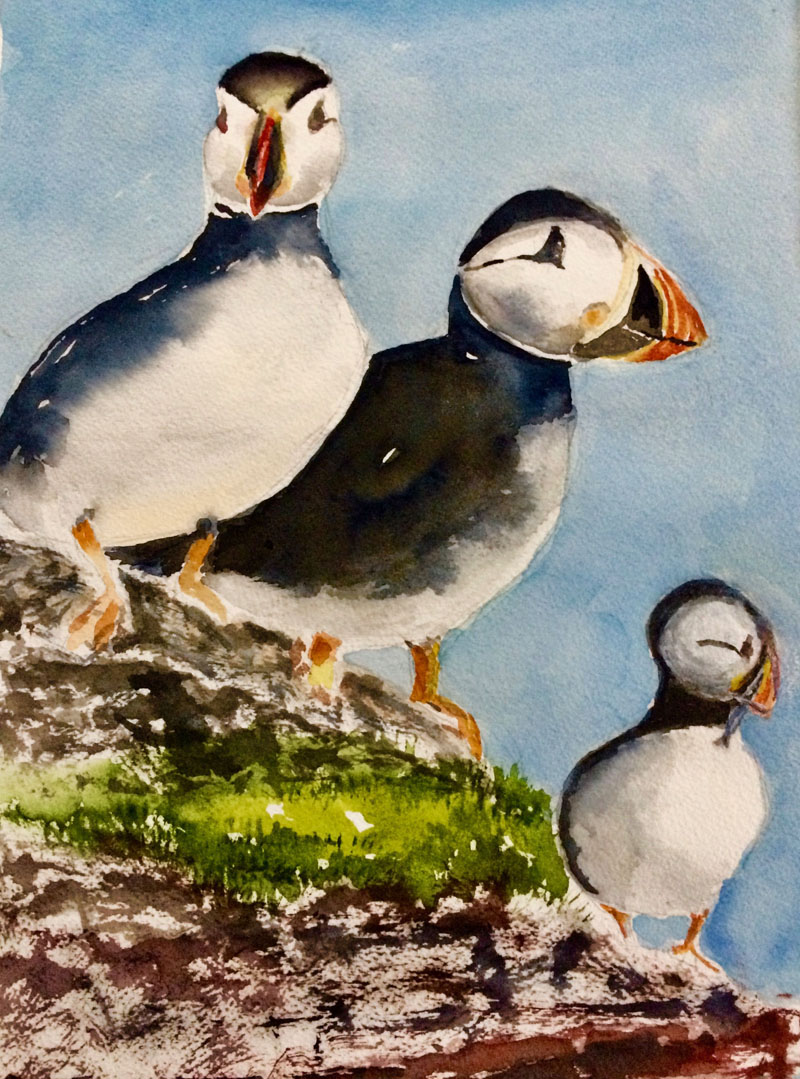 """""""Puffins,"""" by Kerstin Chapman."""