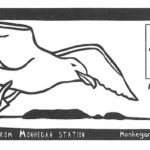 Monhegan Museum Celebrates 50 Years with Pictorial Postmark