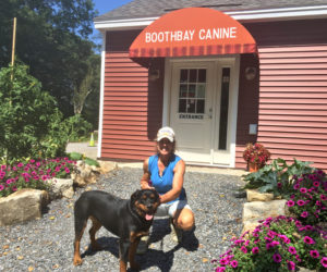 Boothbay Canine Day Care & Boarding Open for Business