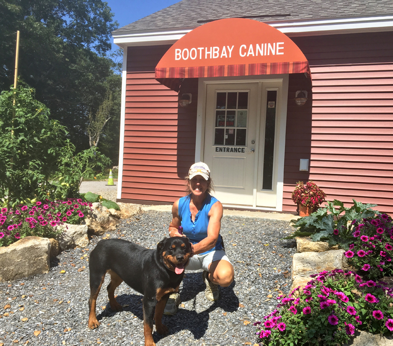 "Carole Jordan with one of her ""resident dogs,"" Sperry, outside her new business, Boothbay Canine Day Care & Boarding. (Suzi Thayer photo)"