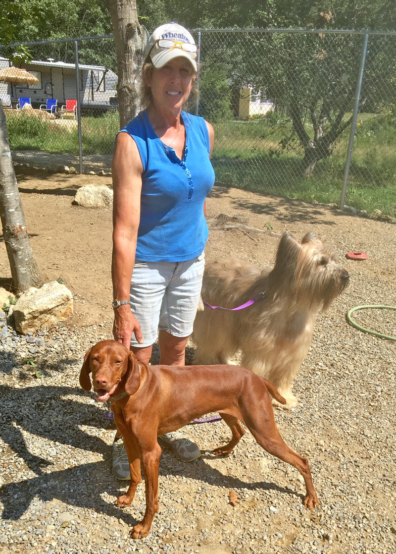 Carole Jordan with her dog, Penny, front, and one of her happy boarders at her new business, Boothbay Canine Day Care & Boarding. (Suzi Thayer photo)