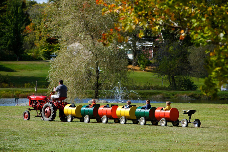 The always popular barrel train is the perfect size for young visitors.