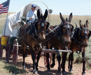 Travel the Oregon Trail at Boothbay Railway Village