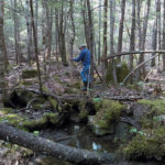 Midcoast Conservancy Adds to West Branch Preserve