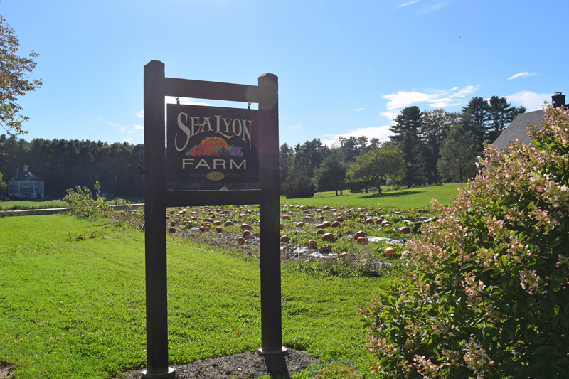The sign at the entrance to SeaLyon Farm stands in front of the farm's pumpkin patch. (Jessica Clifford photo)
