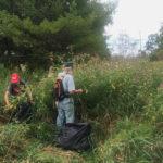 Talk on Invasive Plants of Pemaquid Peninsula in Bremen