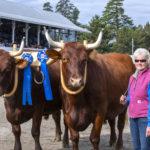 Orff Wins Best Overall Pair at Fryeburg Fair